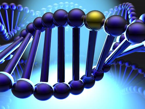 美科学家合成最小基因组 向生命之谜迈进一步