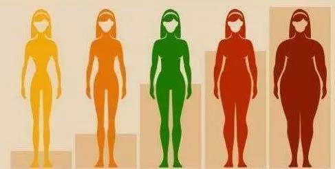 为啥女人先胖腿,男人先胖肚?